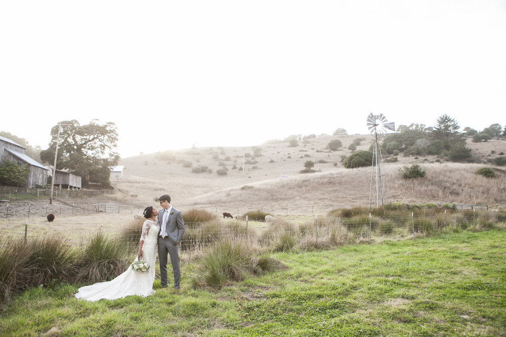 Wedding couple stand in field at the Mann Family Farm in Bolinas