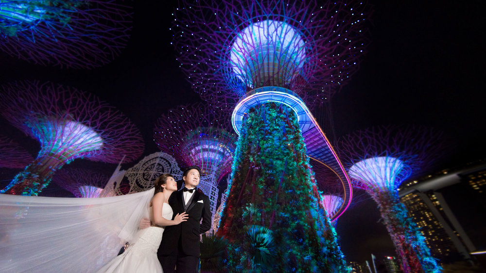 3 Pre wedding garden by the bay 02.JPG