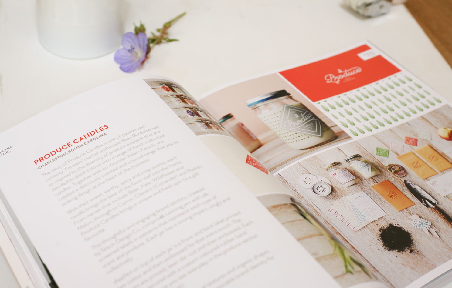HOW TO STYLE YOUR BRAND BESTSELLING BOOK BY FIONA HUMBERSTONE-2