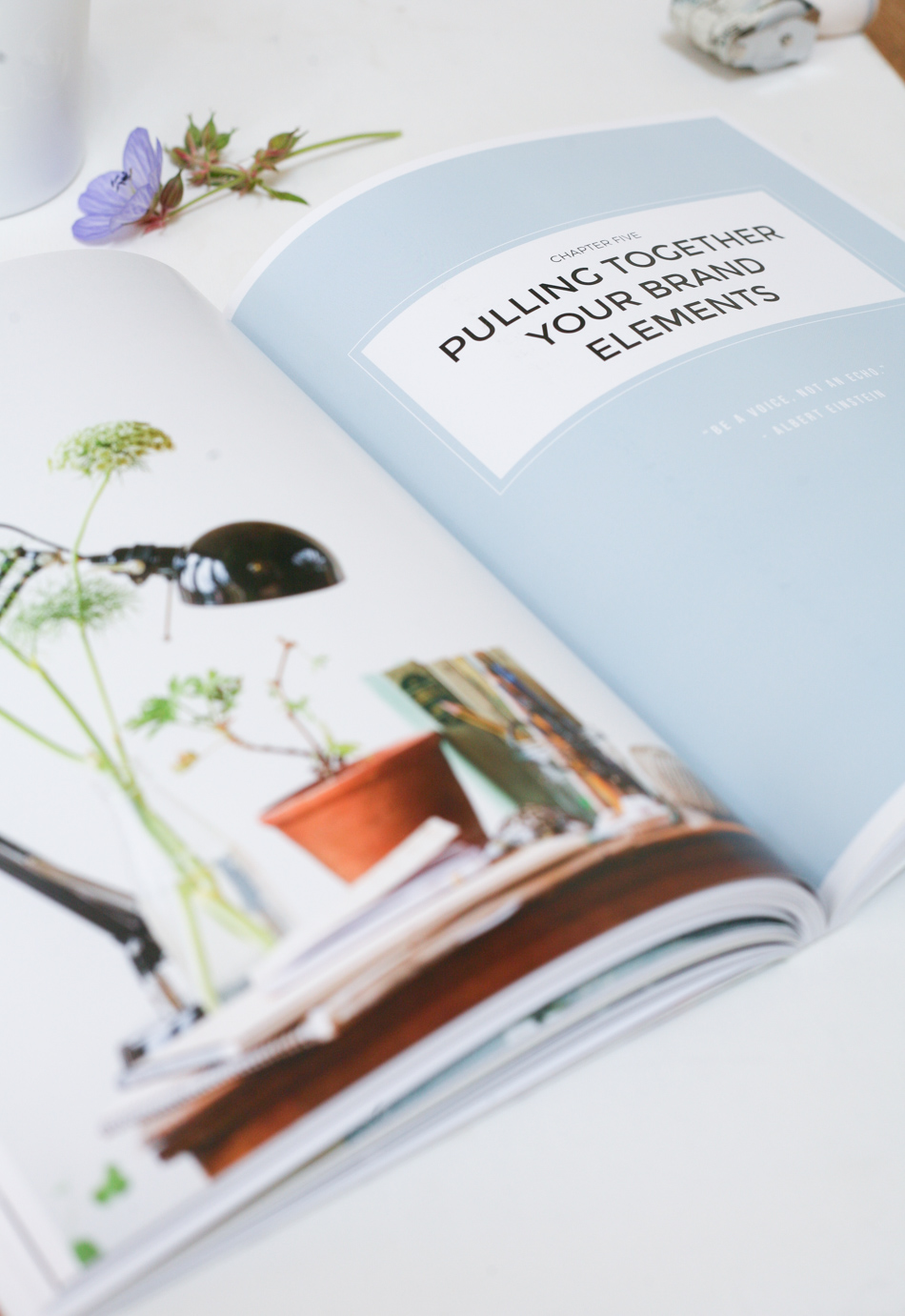 HOW TO STYLE YOUR BRAND BESTSELLING BOOK BY FIONA HUMBERSTONE-5