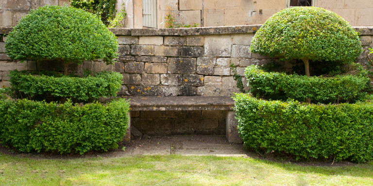 Box-topiary-and-stone-bench-in-Box-Wiltshire