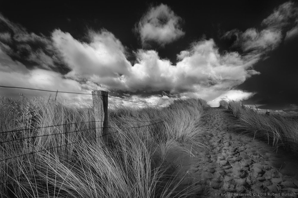 Beach track, Infrared