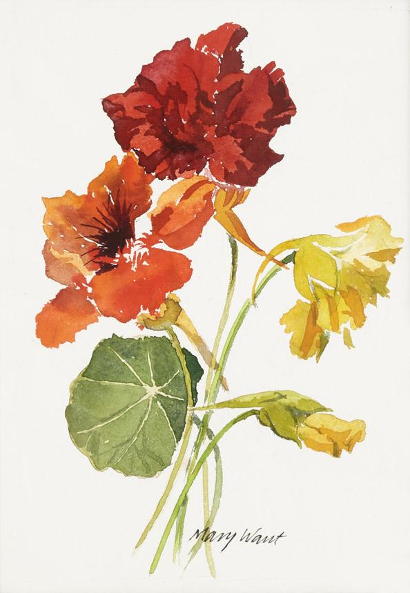 Flowers_19.jpg