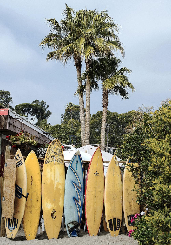 surf côte ouest
