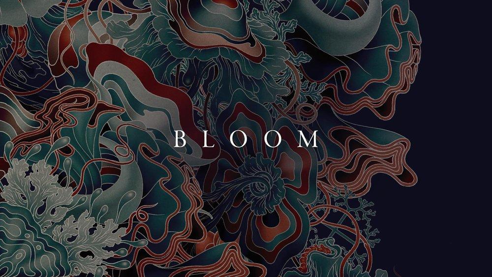 AC_Website_Thumbnails_Bloom.jpg