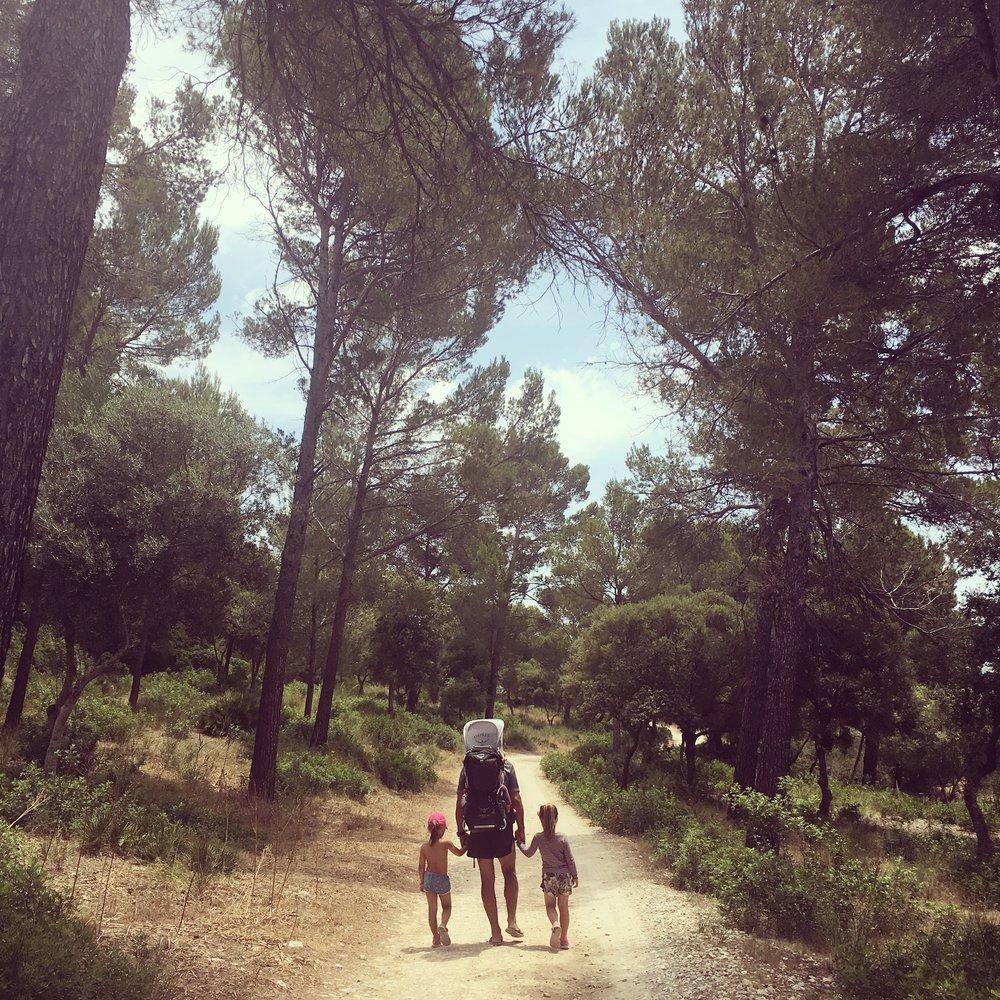 Her vandrar vi i eit fantastisk vakkert – og helsefremmande:-) – skogsområde på Mallorca.