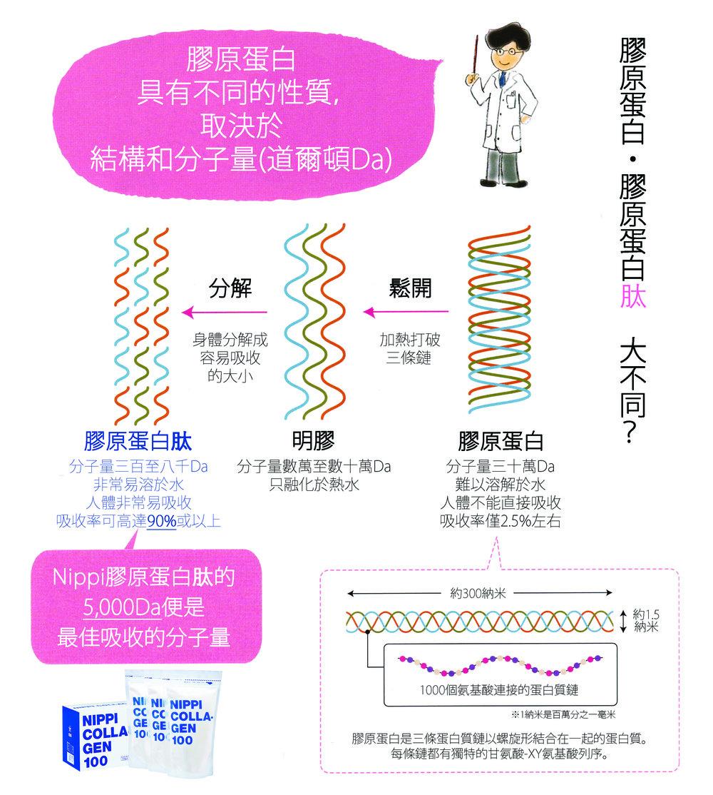Collagen vs Collagen Peptide_ver1_110g.jpg