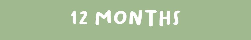 12MONTHS.jpg
