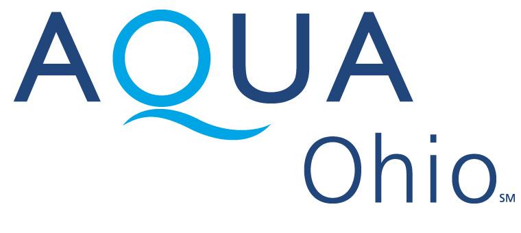 Sponsor AO.jpg
