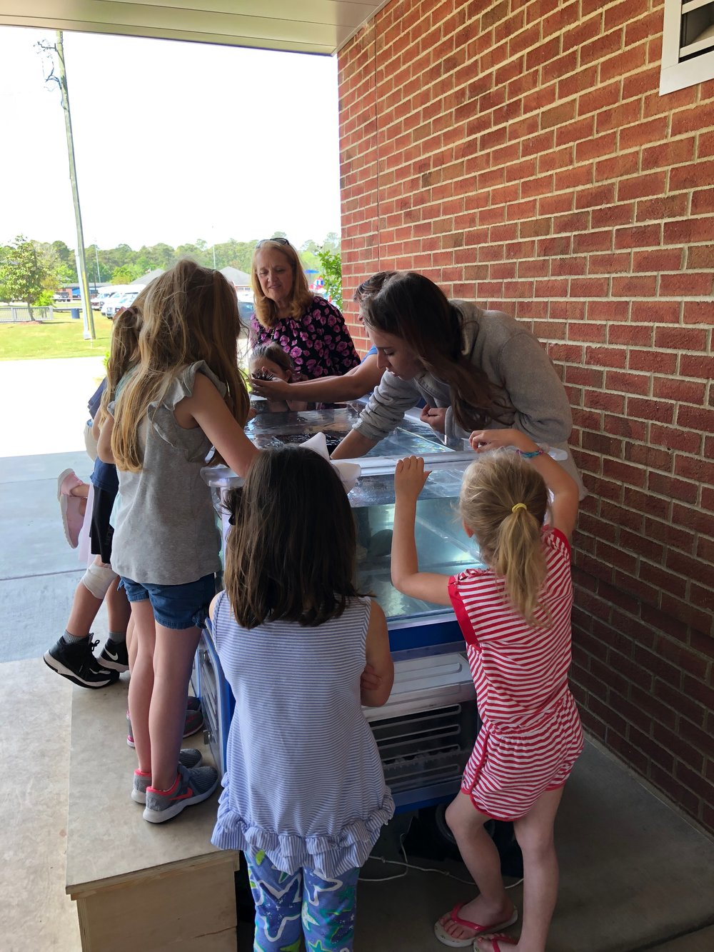 Kindergarten teaching assistant Joy Curcio watches her students as volunteer Paige Davis reaches into the touch tank to show students an ocean invertebrate. Submitted photo.