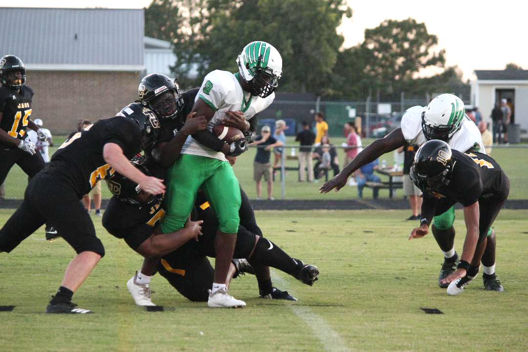 Holmes throws four touchdowns, Vikings knock off North Pitt