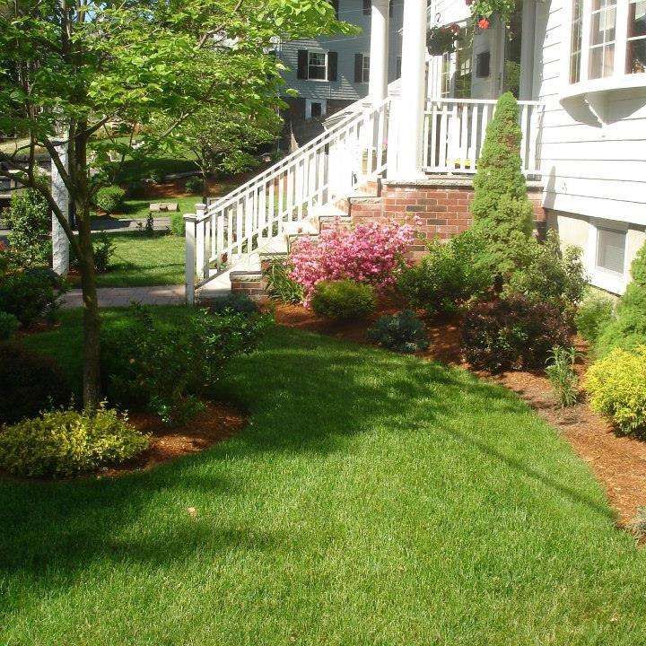 land-solutions-billerica-ladscaping-services-1.jpg