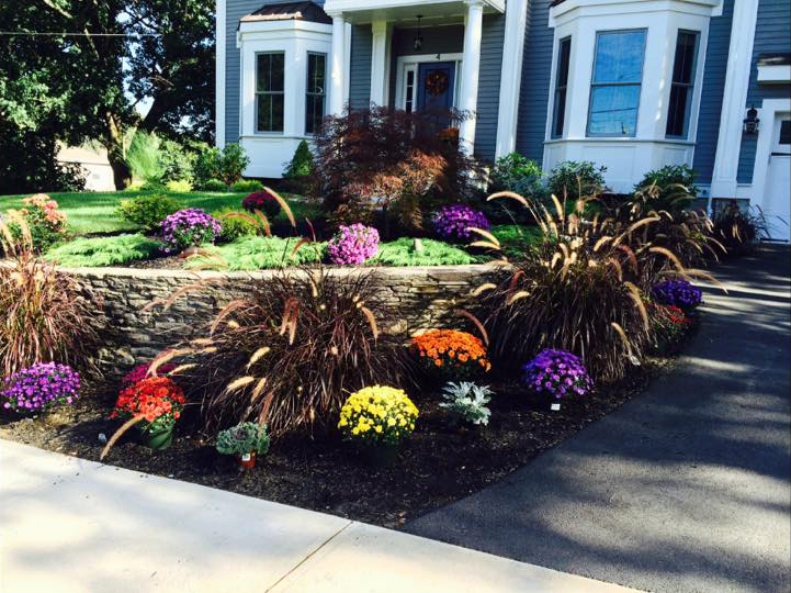 land-solutions-billerica-ladscaping-services-2.jpg