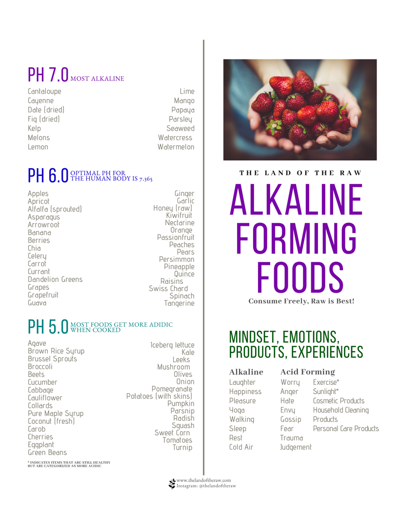 Acid Vs Alkaline Foods The Land Of The Raw