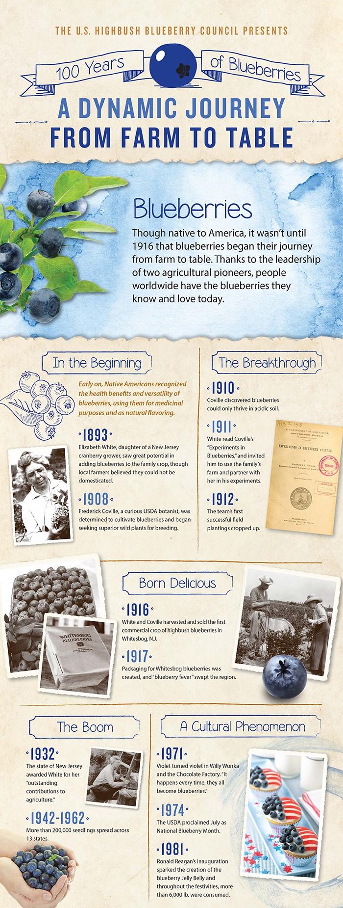 4-16-16-USH-Centennial-Infographic-Updated-for-Print-v2.jpg