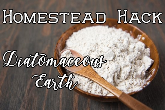 diatomaceous-earth.jpg