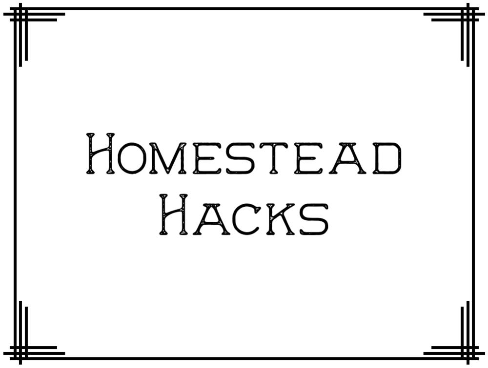 HomesteadHacks.png