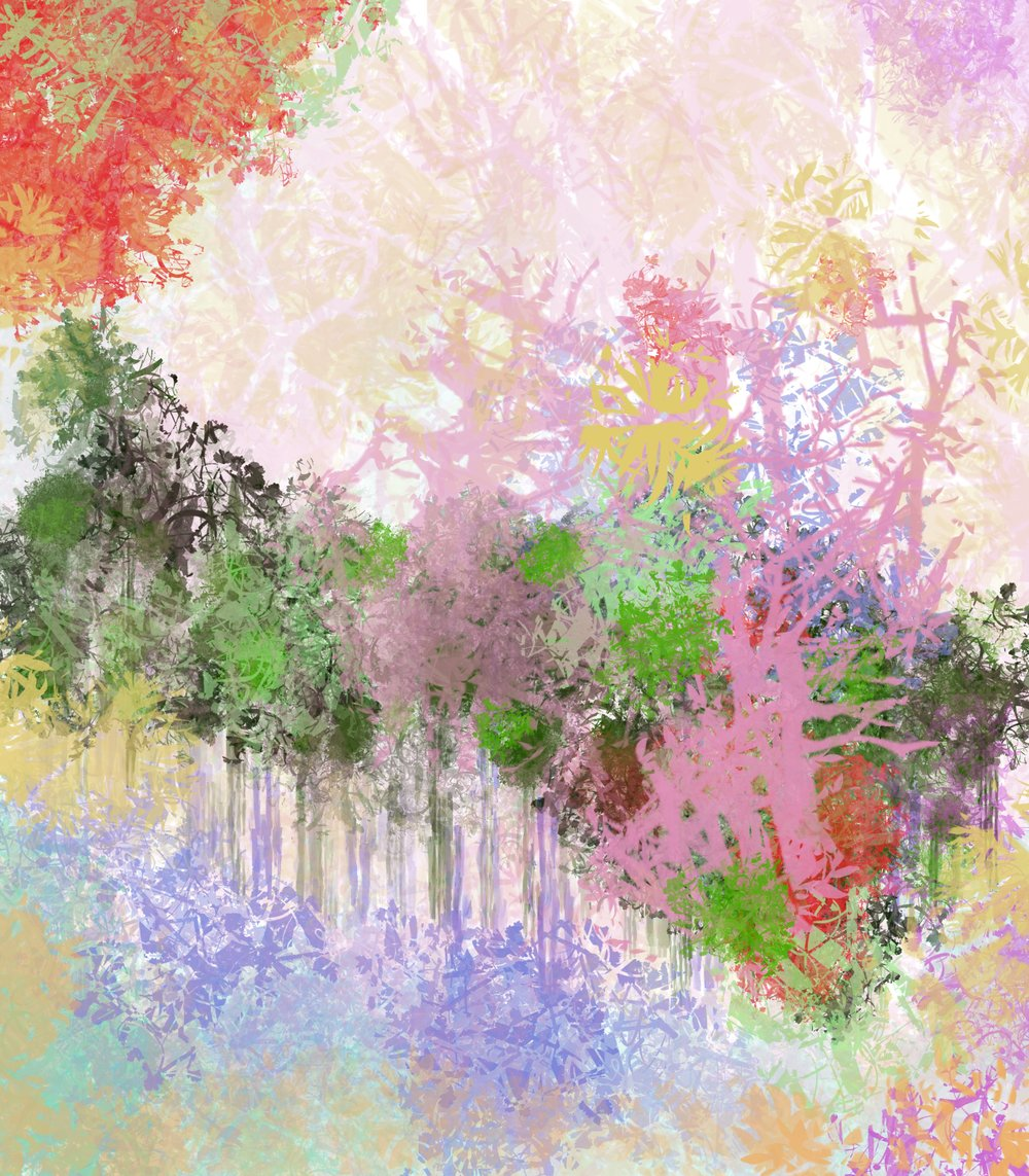 sharkfyn-rainbow-tree-splatter-portland-photo-video-design.JPG