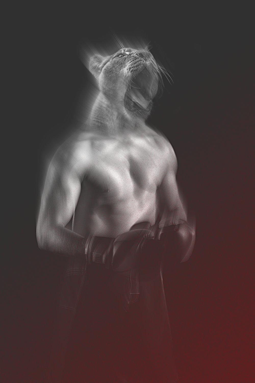 sharkfyn-puma-boxer-comp-portland-photo-video-design.jpg