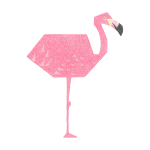 flamingo_thumb.png