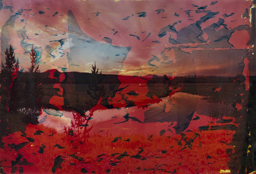Gibbon Lake, WY 1  2013  chromogenic print soaked in Gibbon Lake water  52 x 72 inches