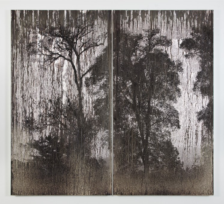 Matthew Brandt AgXBD752A, 2018. silver on silver gelatin print (mounted on aluminum), diptych 74 3/4 x 41 1/8 x 1 3/4 in, each PPc    (189,9 x 104,5 x 4,4 cm, each) 74 3/4 x 83 1/4 x 1 3/4 in, installed (189,9 x 211,5 x 4,4 cm, installed)