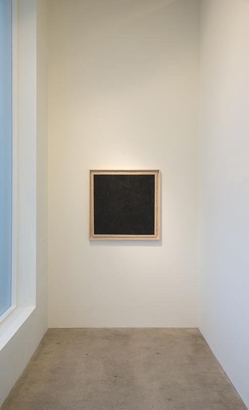 The Black Mirror  2013  Diane Rosenstein