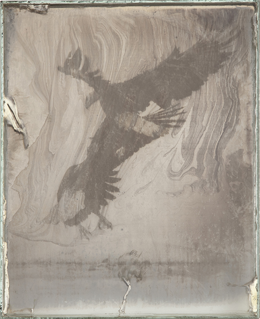 Eagle 9  2017-2019  Daguerreotypes made from American Silver Eagle coins and glass  10 x 8 x 1 in.