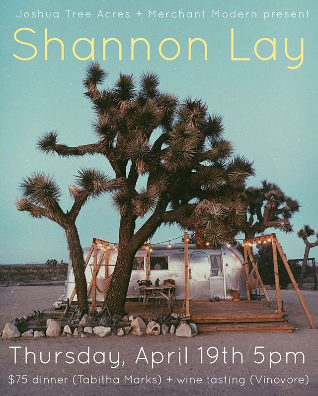 Hi All!  We're so excited to present our first communal gathering with musical guest Shannon Lay + Dinner (@insta_tab ) + Wine tasting +(@vinovorela ) + curated desert playlist by KCRW DJ @valida! $75/person  Space is limited - Link in bio👆  Camping available @ $25/person  BYO ⛺️ & Bedding 💌 joshuatreeacres@gmail to reserve a camping spot  We can't wait to spend this special evening in the desert together! Please tag anyone that would be interested❤️🌵✨ 📷: @gaby_paul
