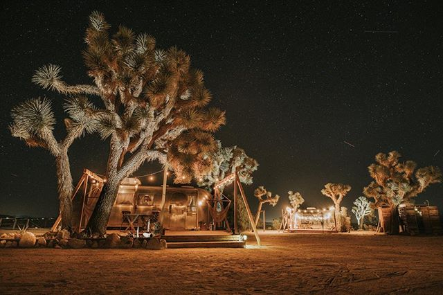 stargazing summer evenings makes us dream 💫🌵 📷 @kingstonphoto