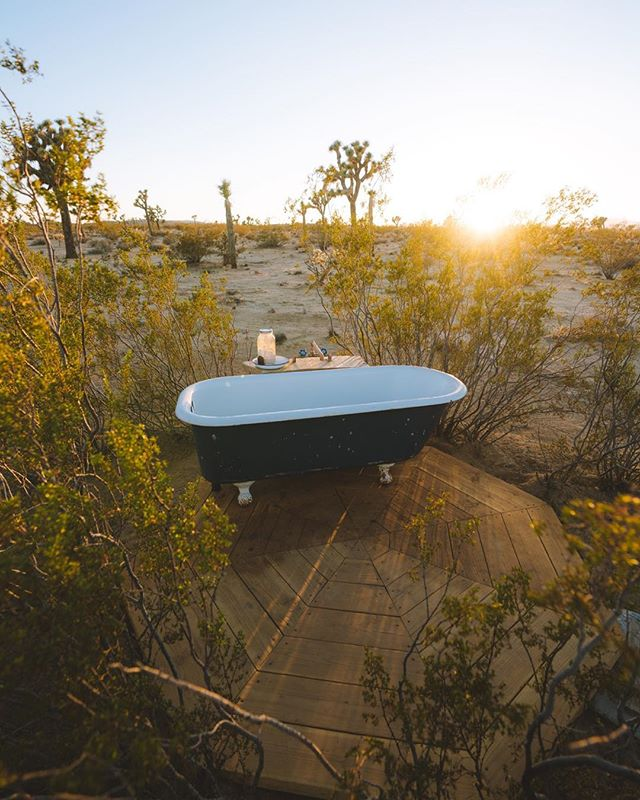 We're so happy to share our outdoor creosote tub with the world 🛀 the vision has always been to create as many unique spaces on our land to explore & peacefully disconnect from modern life. Creosotes naturally have many healing & medicinal properties. As they surround the tub, you feel cocooned in a protective ring and smell the scent of desert rain. The draining water feeds back into earth. It's a complete sensorial experience 🌵🌿🌙🌎 📷 @chrispoops