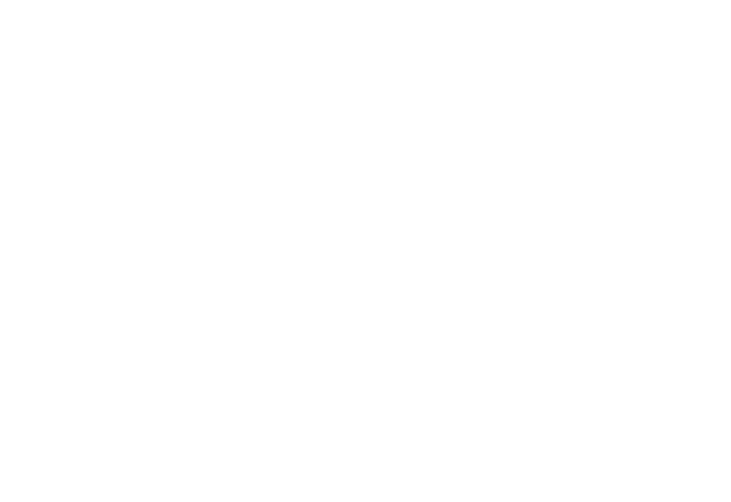 Malibu Surfing Association