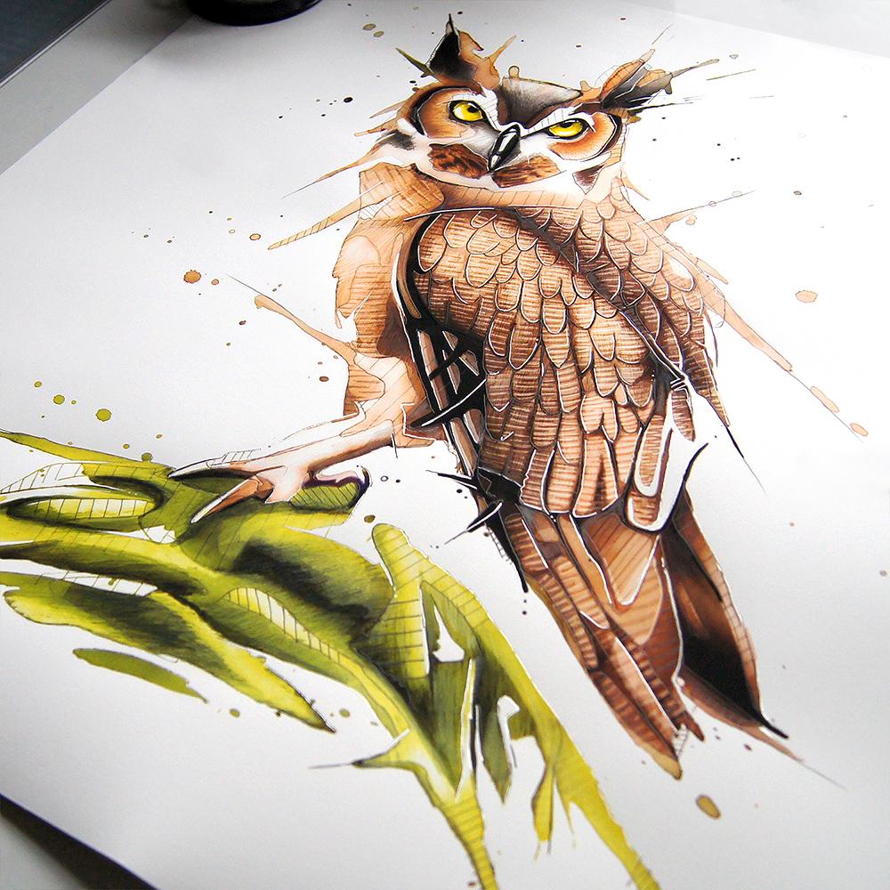Owl_JeremyKyle2.jpg
