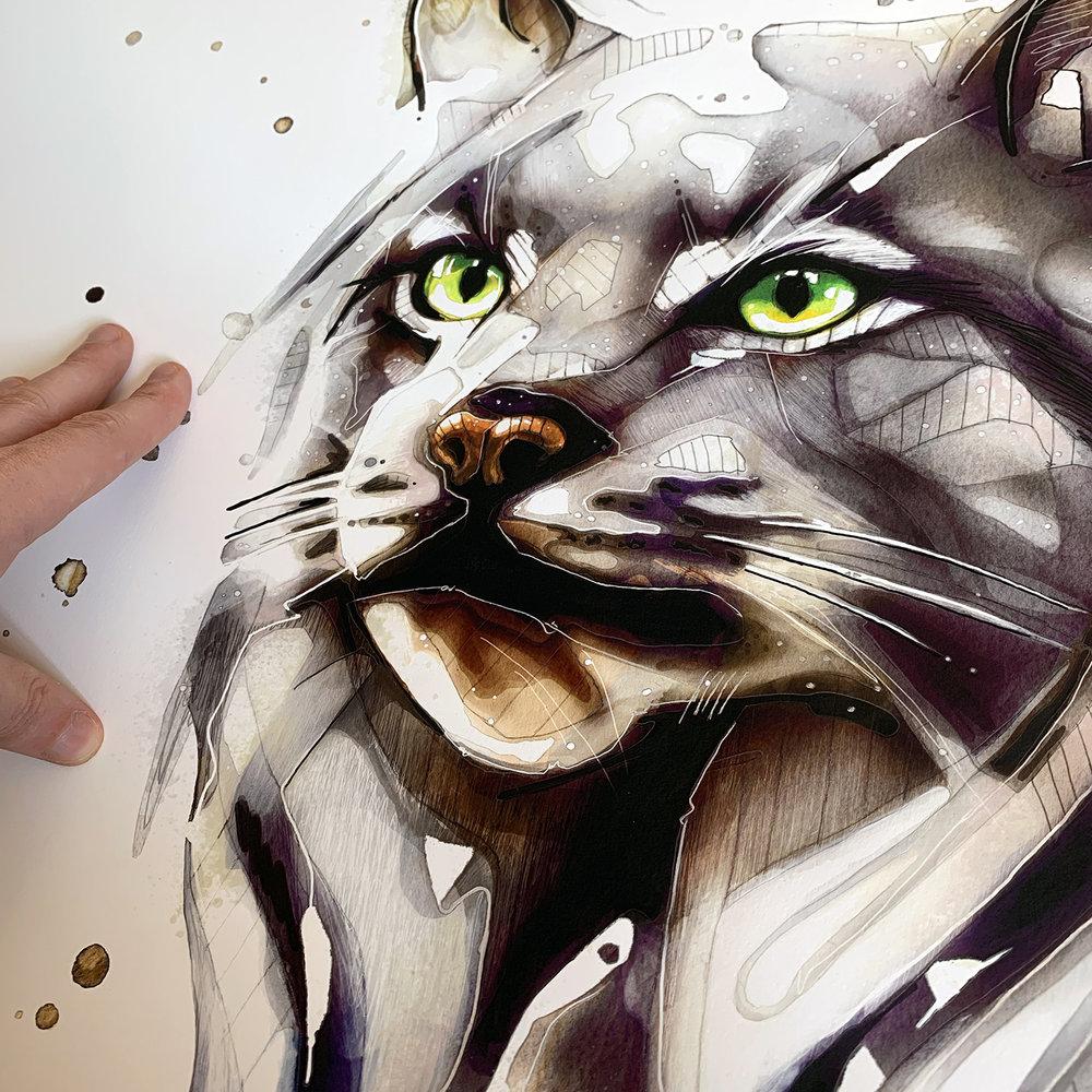 CloseUp_Lynx.jpg