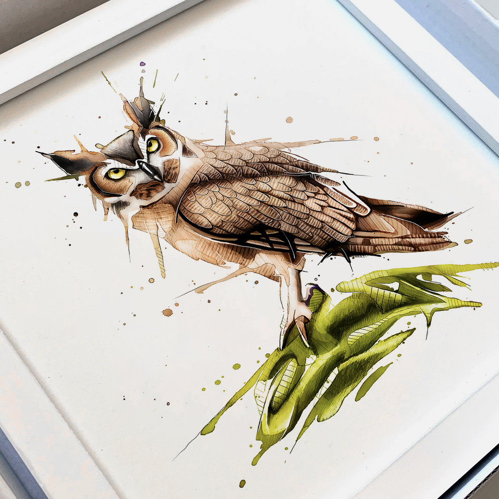 Owl_Frame.jpg