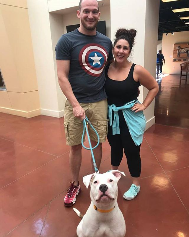 We adopted our dog, Molly, at @EastBaySPCA over 10 years ago. It warms our hearts to see the wonderful adoptions still happening there every week. Look at these adorable pets that found their forever homes last week. . . . #AdoptDontShop #FairyDogHeaven