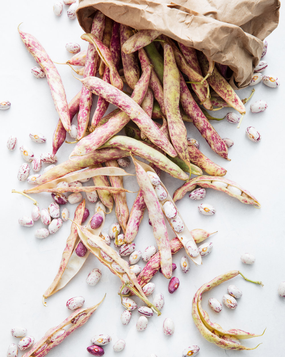 cranberry-beans-good-eggs.jpg