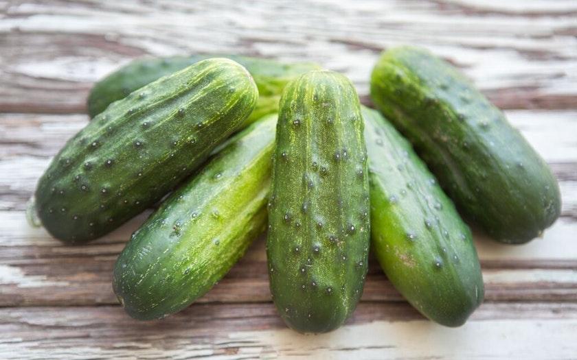 Live Earth Farm  Organic Jackson Pickling Cucumber  $3.99