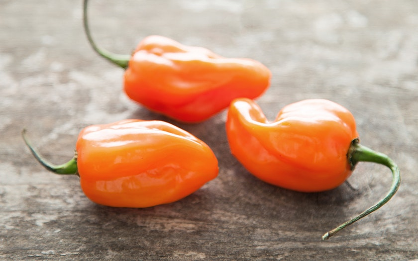 Covilli Organics   Organic & Fair Trade Habanero Pepper Trio (Mexico)     $0.49