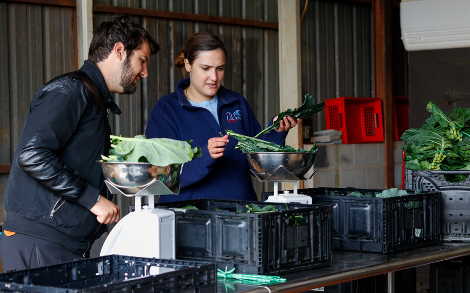Samuele Ceolin and Chloe Schrader, University of Georgia students, volunteer at UGArden on Monday, April 16, 2018.