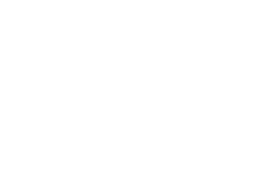 Public Art Fund Wellington City Council logo