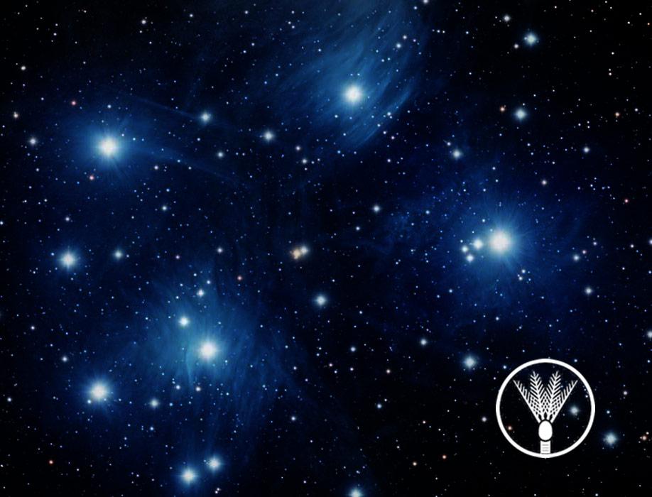library-stars.jpg