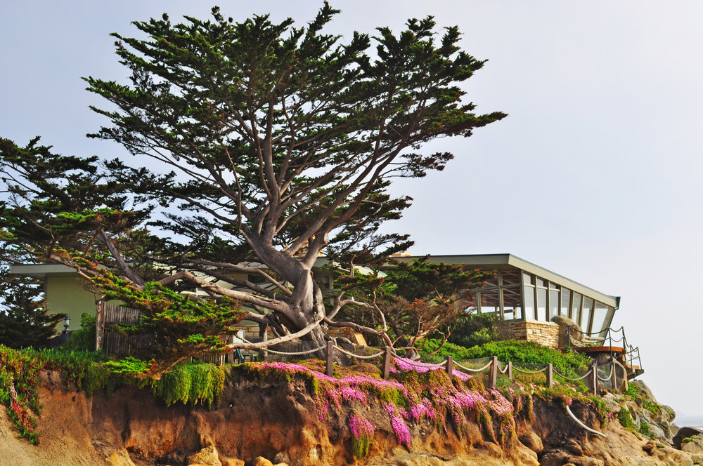 Carmel by the Sea California Living