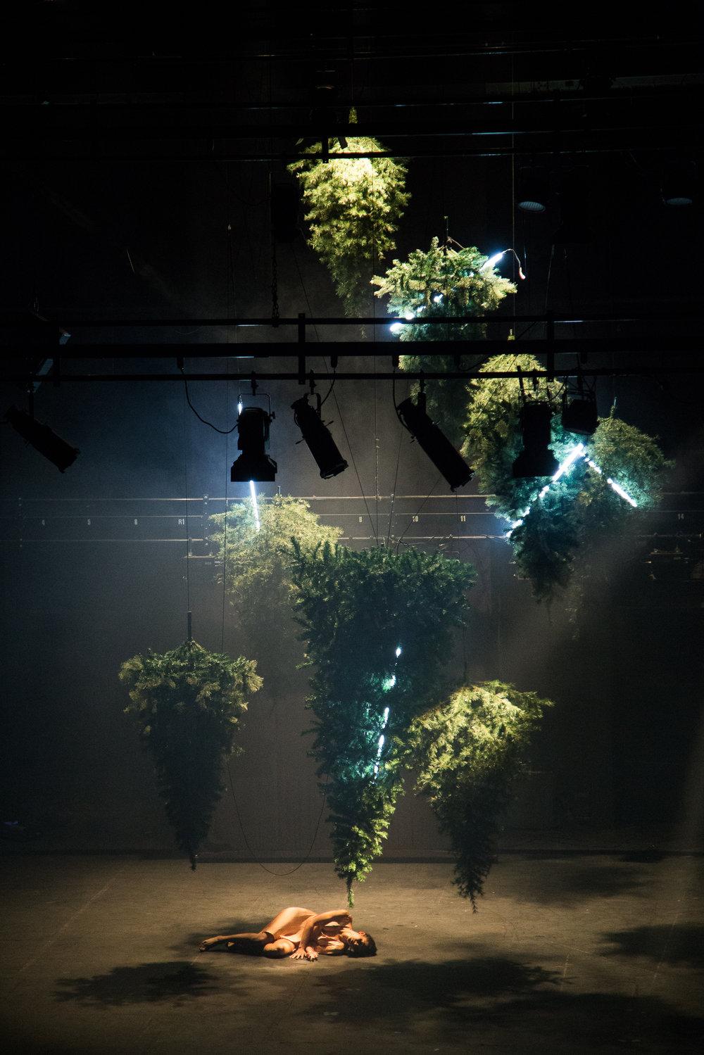 25-500Lumenes-Teatro de la Ciudad-30 de Agosto de 2017-Fotogr†fo Carlos Alvar.jpg