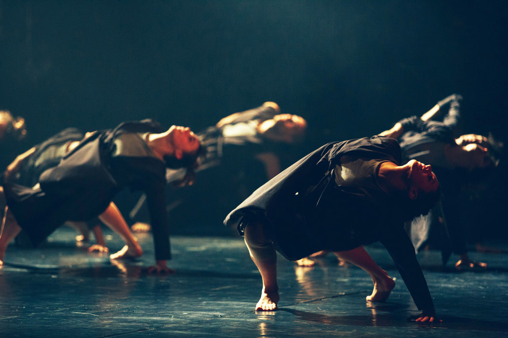 Vertigo Dance Company, _white noise_ photo by rune abro1.jpg