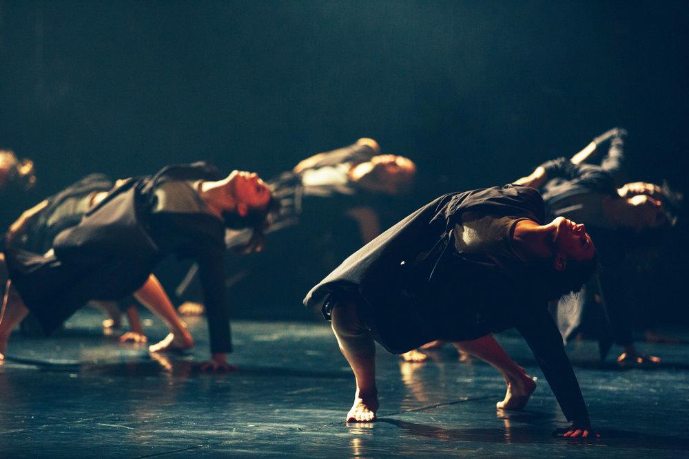 Vertigo Dance Company, _white noise_ photo by rune abro1.jpg