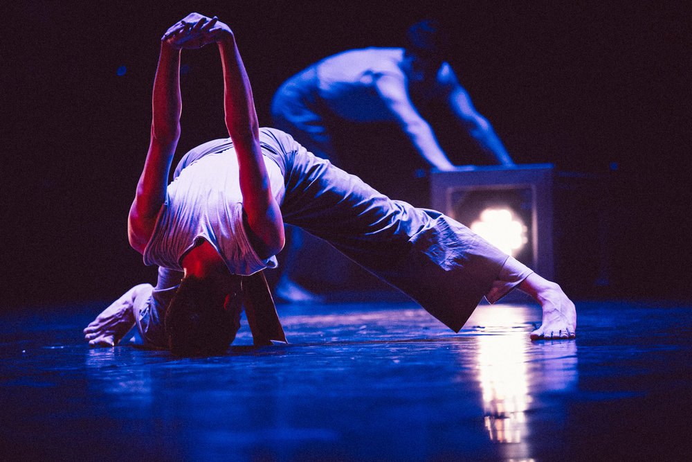 Vertigo Dance Company, _white noise_ photo by rune abro2.jpg