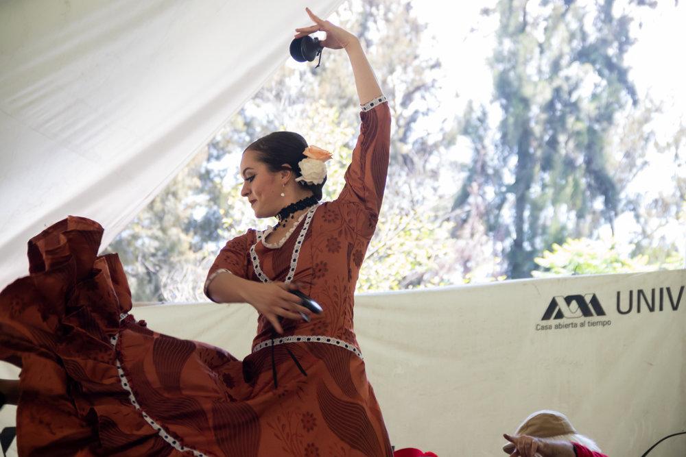 12. Mi abuela flamenca  Casa de las Bombas. 28 de abril  (14).jpg