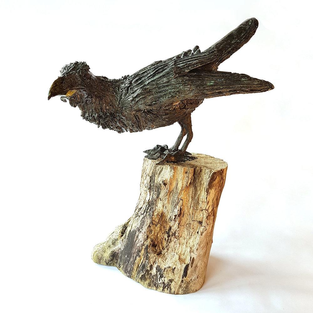 Bobbie-Watchorn-Crow-1.jpg