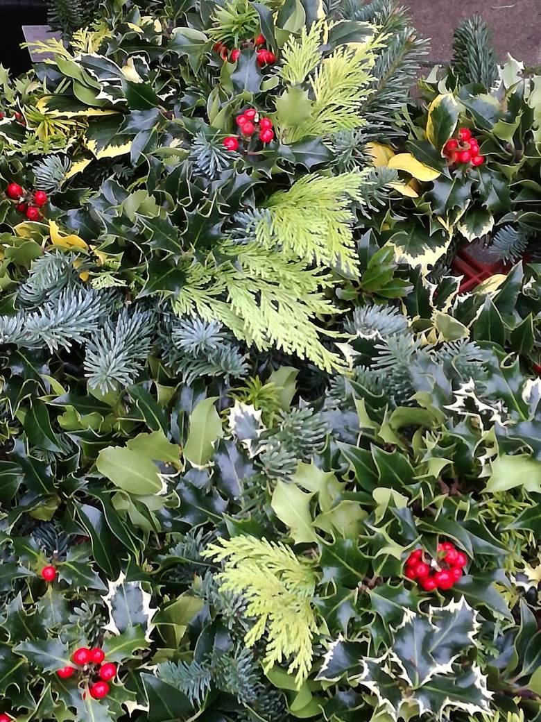 wreaths december 2017.jpg